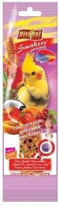 Kolby z owocami dla papużek nimf