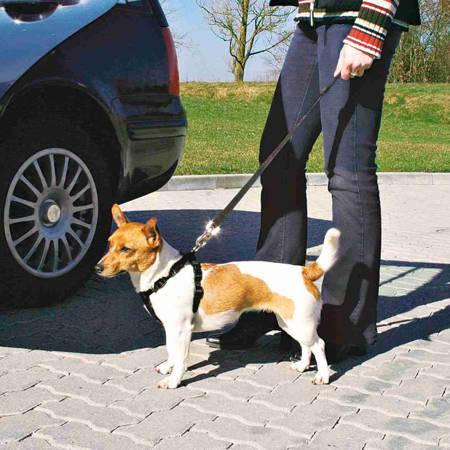 Szelki bezpieczeństwa do samochodu dla psa - czarne - rozmiar S